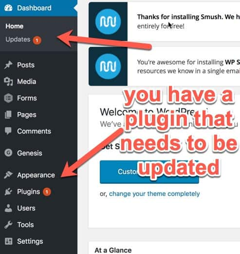 WordPress plugin needs update
