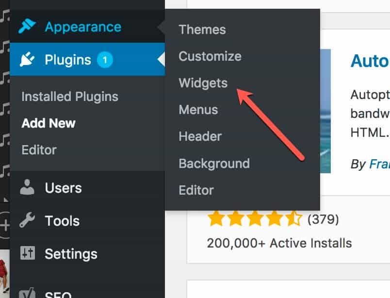 WordPress Widgets Tab