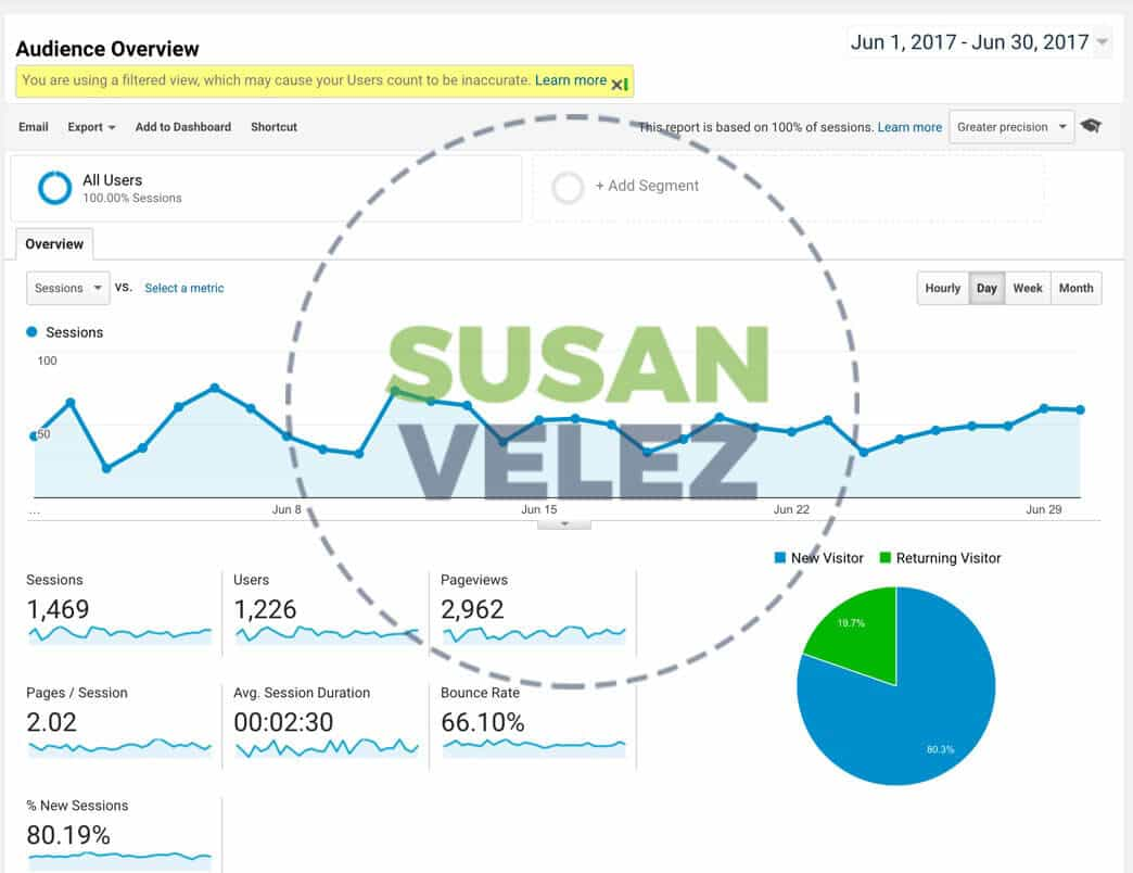 blog stats analytics susan velez