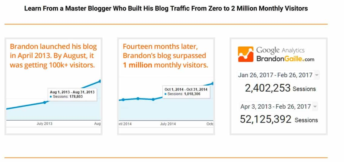 Brandon The Blog Millionaire