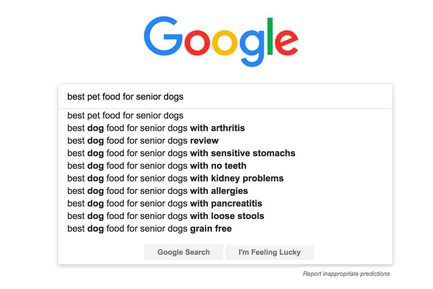 senior dogs keywords