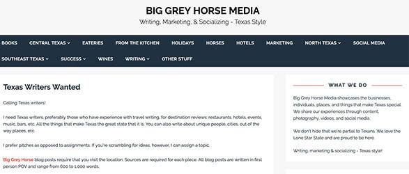 Big Grey Horse