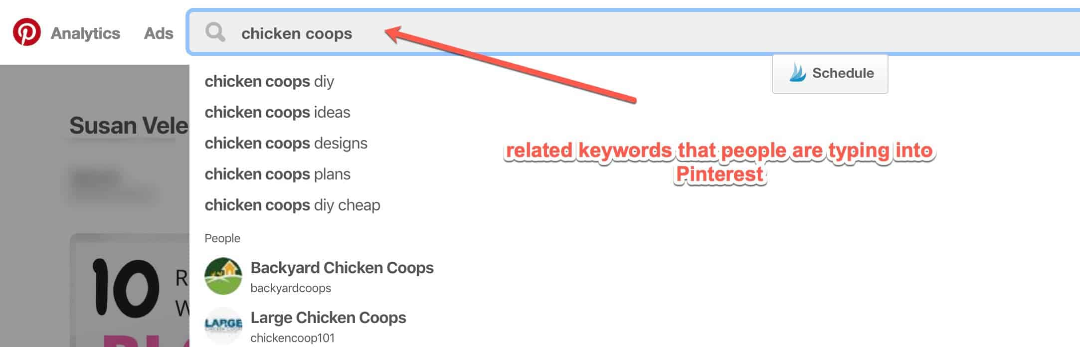related keywords in Pinterest