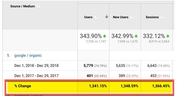 SEO growth in one year